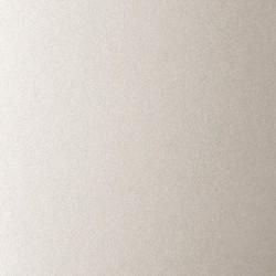 10 Biglietti 285 gr - 12x18 - carta perlata Opal