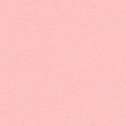 10 Biglietti 285 gr - 12x18 - carta perlata Rose Quartz