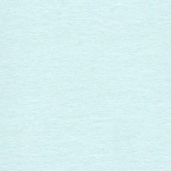 10 Biglietti 285 gr - 12x18 - carta perlata Aquamarine